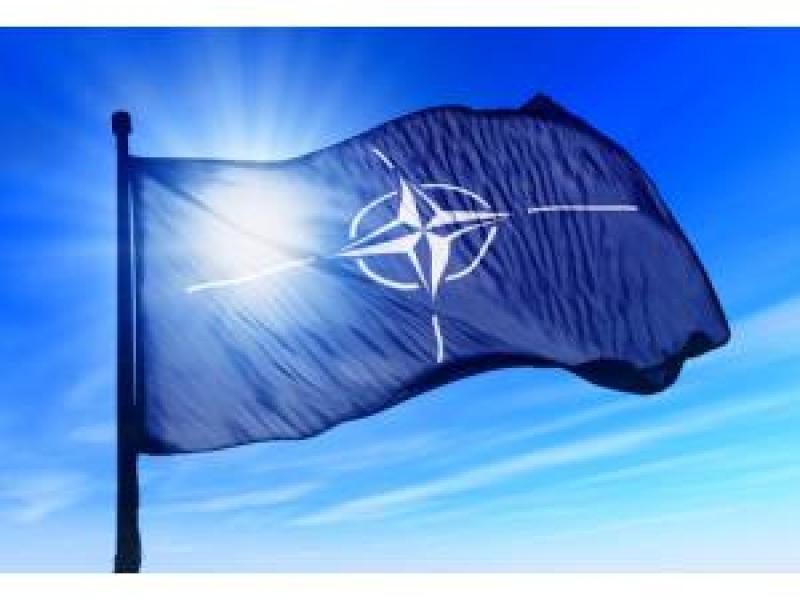NATO Estoniyada genişmiqyaslı kibertəlimlərə başlayıb