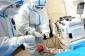 Koronavirusun daha bir simptomu üzə çıxdı: Hər 30 xəstədən biri...