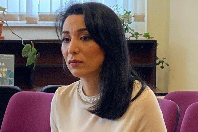 Ombudsman Səbinə Əliyeva Gürcüstanın Xalq Müdafiəçisinə müraciət edib