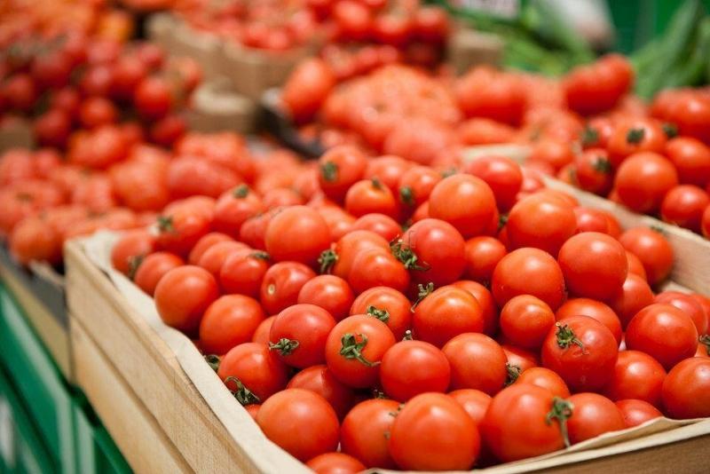 Azərbaycanın 187 müəssisədən Rusiyaya pomidor ixracına icazə verilib