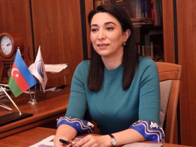 """Ombudsman Dağlıq Qarabağda qeyri-qanuni """"seçkilər""""lə bağlı bəyanat yayıb"""