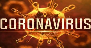 Koronavirusun bir məqsədi var: tez bir xəstədən digər insana keçsin-  Professor