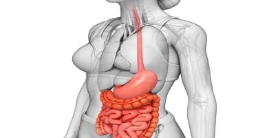 Qida borusu xəstəliklərinin simptomlar qrupu