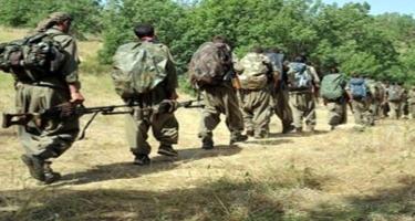 Türkiyəyə daxil olmaq istəyən 5 PKK-çı saxlanıldı