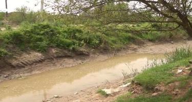 Saatlıda əkin sahələri susuz qalıb - VIDEO