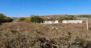 Qarabağa qayıdış planı - VİDEO