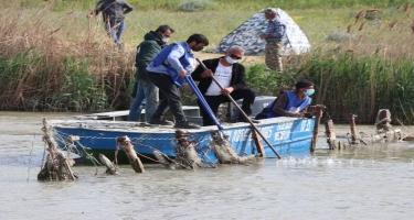 Baş Şirvan kollektoru qanunsuz balıq torlarından təmizlənib - FOTO