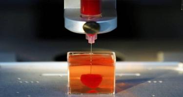 İsraildə 3D printerdə canlı ürək çap edildi - Tibdə ilk