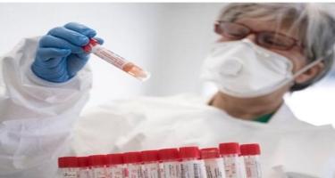 Koronavirus laboratoriyada hazırlanıb? - ÜST rəhbəri danışdı