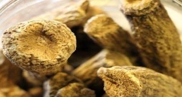 Udi hindi yağının faydaları: Necə istifadə edilir?