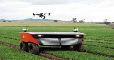 Avstraliyada süni zəka və robotlar tərəfindən idarə olunacaq ferma yaradılır