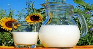 Bitki mənşəli südün faydaları - Həzmi asanlaşdırır, vitamin qaydağıdır...