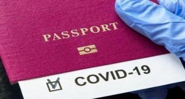 "225 manata saxta ""COVID-19"" pasportu satan üç nəfər tutuldu"
