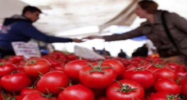 Pomidor nə üçün kəskin bahalaşıb? - VİDEO