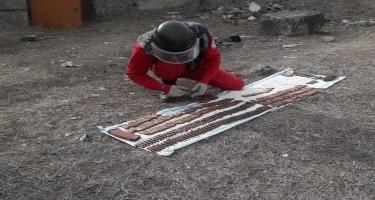 Qazaxda döyüş sursatları aşkarlanıb - FOTO