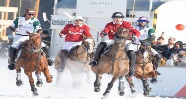 Azərbaycan atları İsveçrə tamaşaçılarını heyran etdi - FOTO