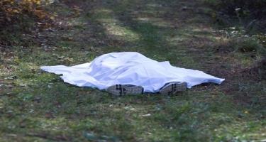 Göygöldə dəhşətli cinayət: Yeyib-içib dostlarını meşədə basdırdılar - ŞOK TƏFƏRRÜAT