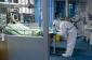 Yeni Zelandiyada koronavirusdan ilk ölüm qeydə alınıb