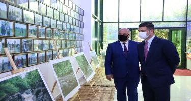 Astarada turizm kompleksi istifadəyə verildi, Lənkəranda yeni çay brendinin istehsalına başlanıldı (FOTO)
