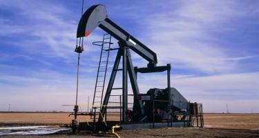Dövlət büdcəsində neftin bir barelinin qiyməti 40 dollardan hesablanacaq