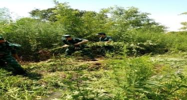 İrandan Azərbaycana narkotik vasitələrin keçirilməsinin qarşısı alınıb (FOTO)