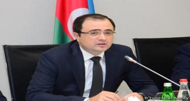 Nazir müavini: Azərbaycan Rusiya iqtisadiyyatına 1,2 milyard dollar investisiya qoyub
