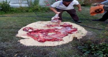 Balakəndə yararsız at ətinin satışının qarşısı alınıb (FOTO)