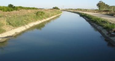 Şamaxıda su kanalına düşən heyvan xilas edilib
