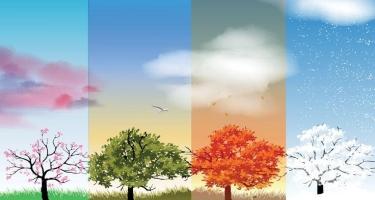 Coğrafiya İnstitutu: Oktyabrın ilk ongünlüyünün havası payız üçün çox xarakterik olmayıb