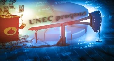 Neftin qiymətinin UNEC proqnozu yeniləndi