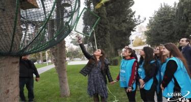 """Heydər Əliyev Fondunun vitse-prezidenti Leyla Əliyeva IDEA-nın """"Urban Ecology"""" layihəsi çərçivəsində aksiyada iştirak edib (FOTO)"""