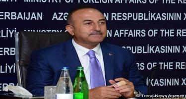 Çavuşoğlu: Türkiyənin bütün dövlət strukturları FETÖ tərəfdarlarından təmizlənəcək