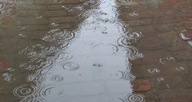 Havanın temperaturu artacaq, arabir yağış gözlənilir